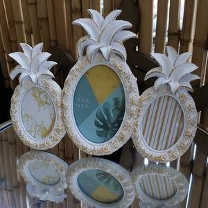 New Pineapple Frame